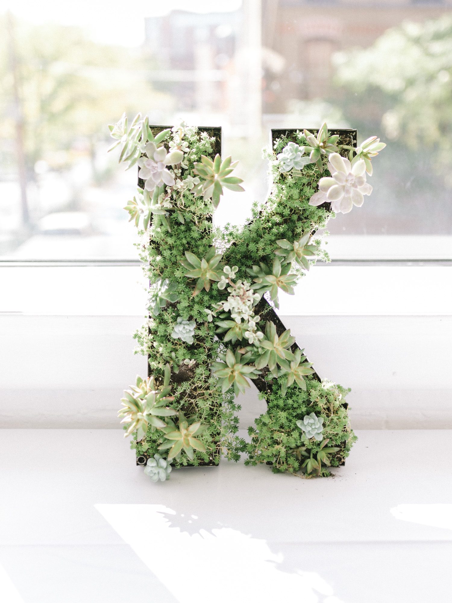 "A wedding decor initial letter ""K"" filled with succulents"