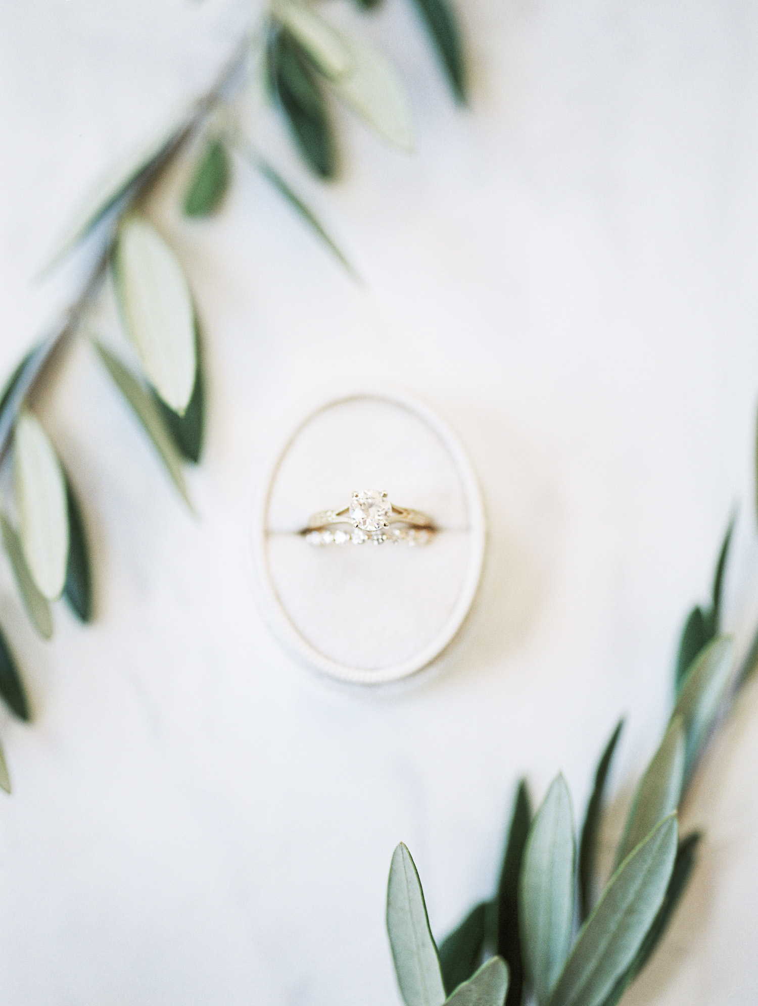 A gold engagement ring with a round diamond in an oval velvet ring box surrounded by olive leaves