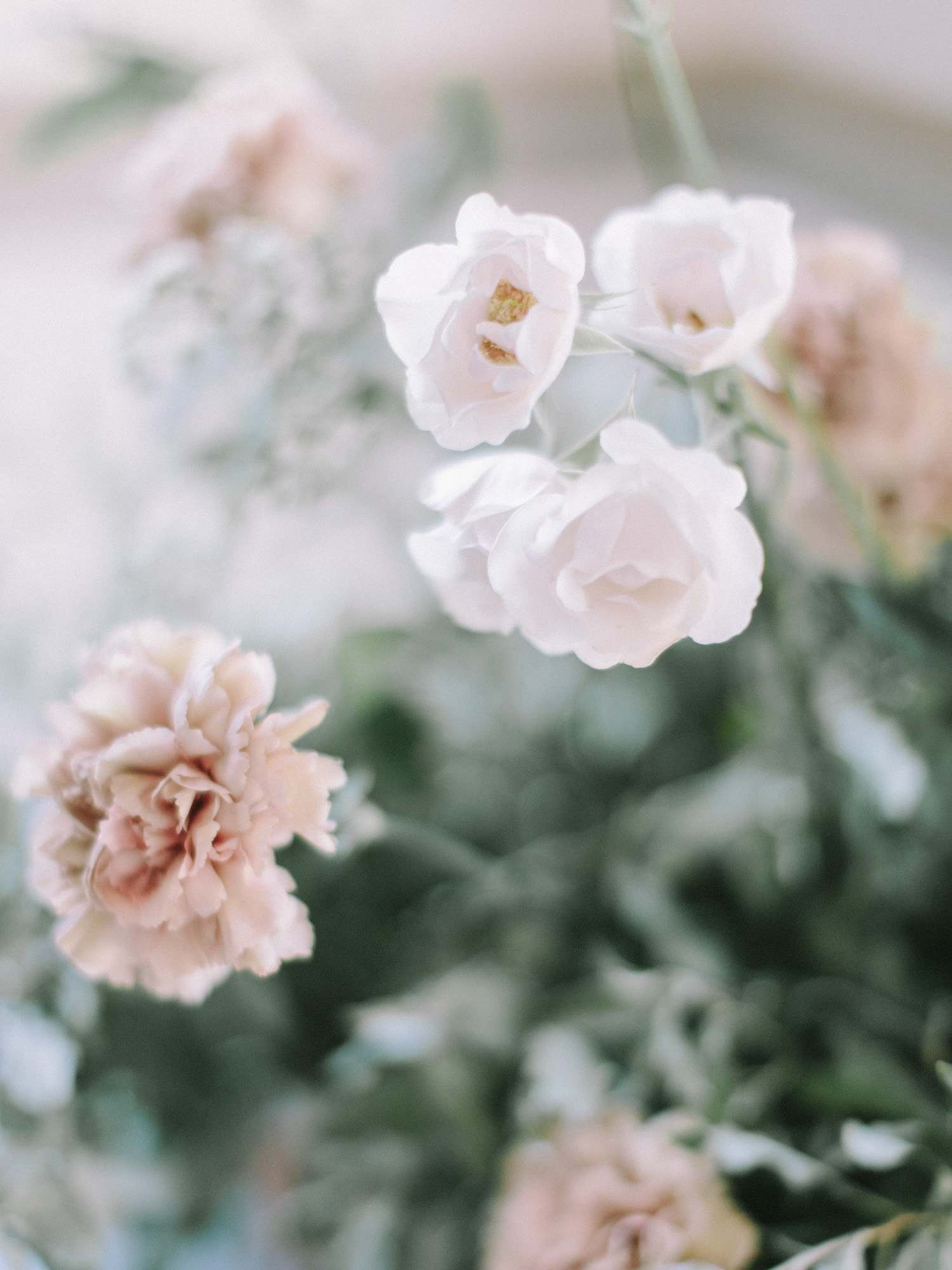 Peach and blush carnations and garden roses captured in soft focus at a wedding reception at the Polo Fields in Ann Arbor