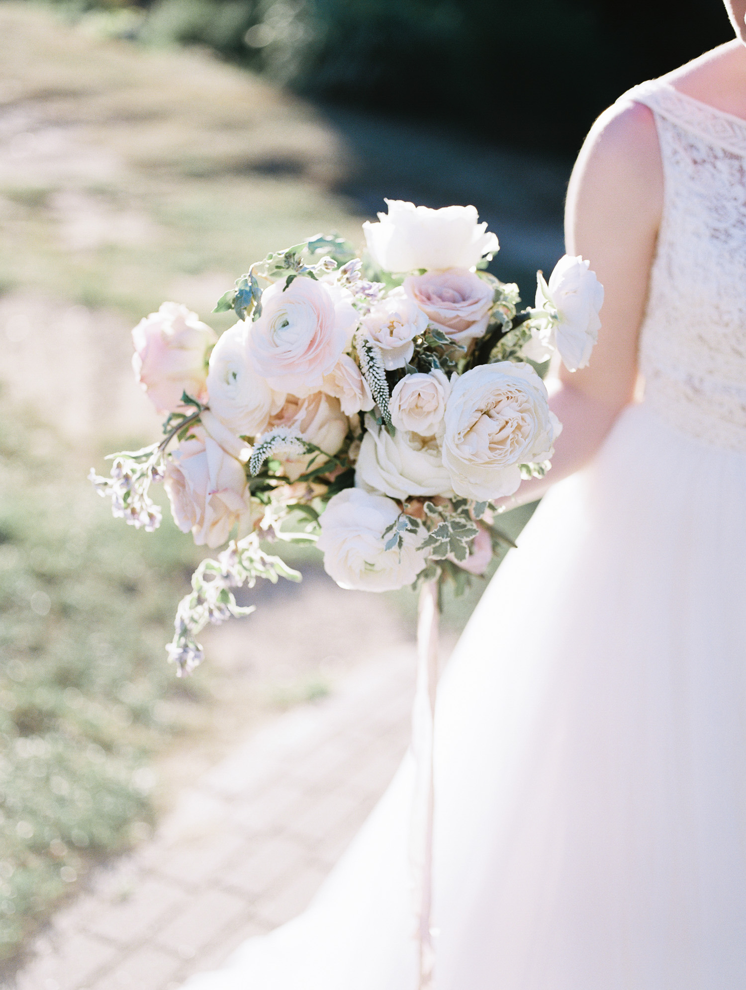 A lush wedding bouquet with white and blush ranunculus and garden roses in golden hour light by Ann Arbor film wedding photographer Christina Harrison