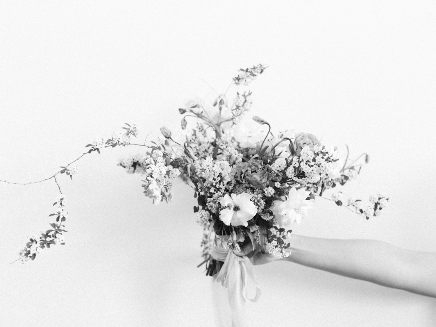 An untamed bouquet of spring flowering branches and white garden roses is held against a white wall