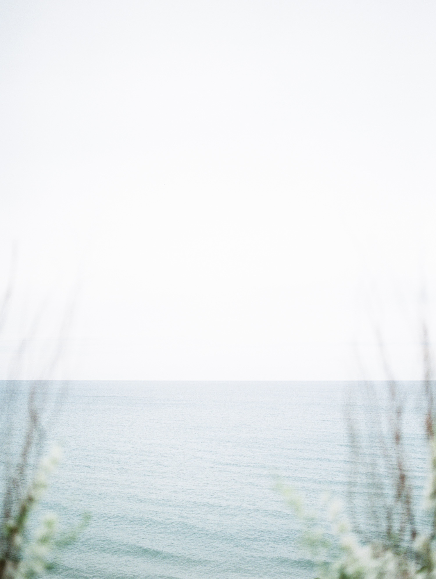 the vast expanse of Lake Michigan with foreground branches in soft focus