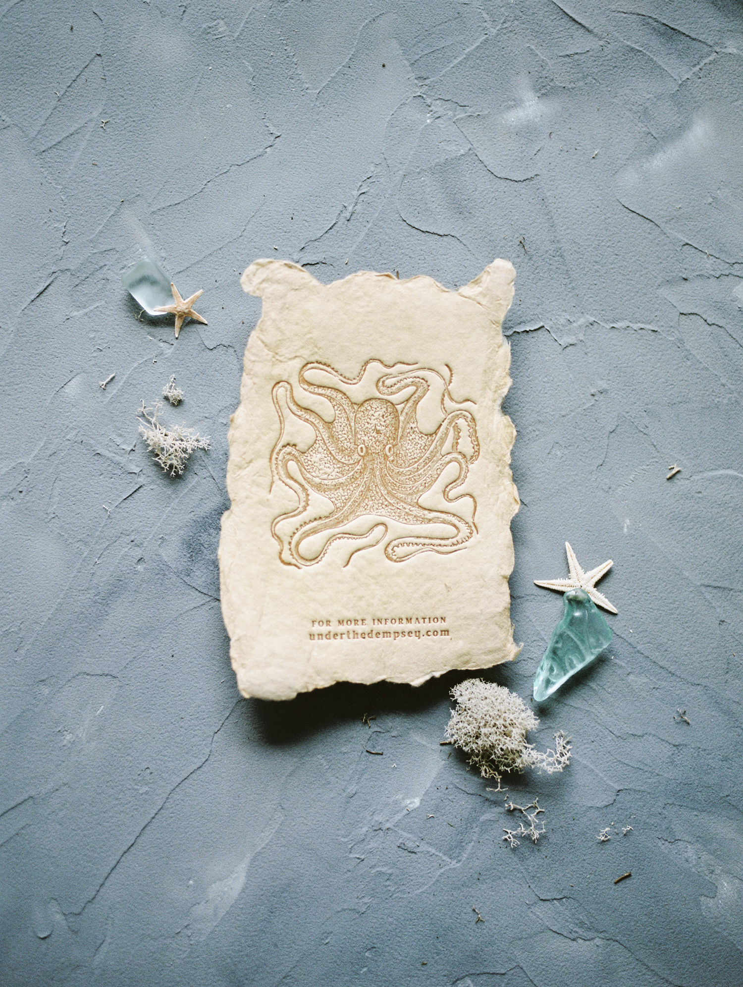 Custom wedding stationery on handmade paper created by a Michigan letterpress design studio is captured on film during a brand photo shoot near Detroit