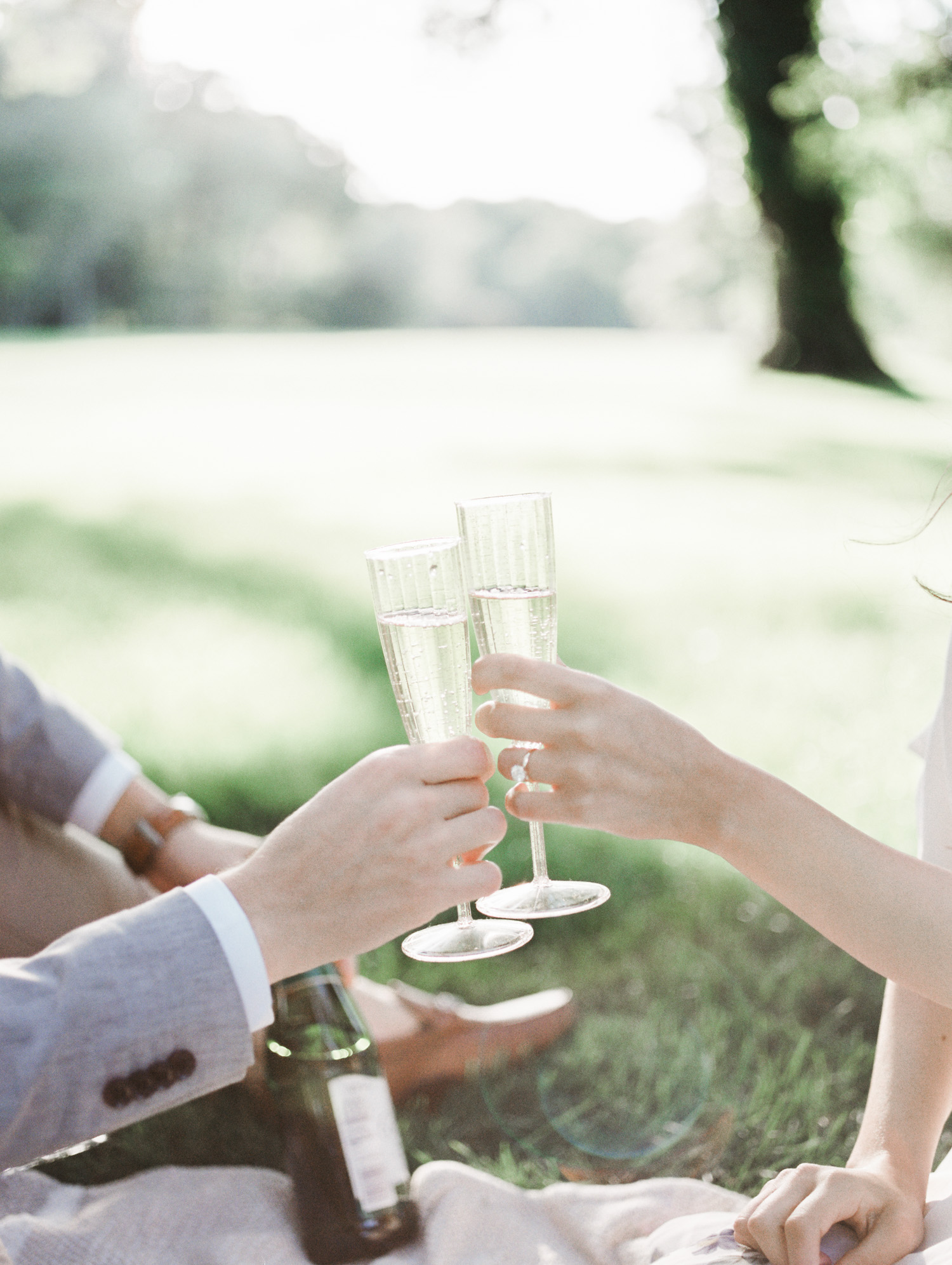A couple's hands toast champagne during their picnic engagement session in Detroit at the Ford House