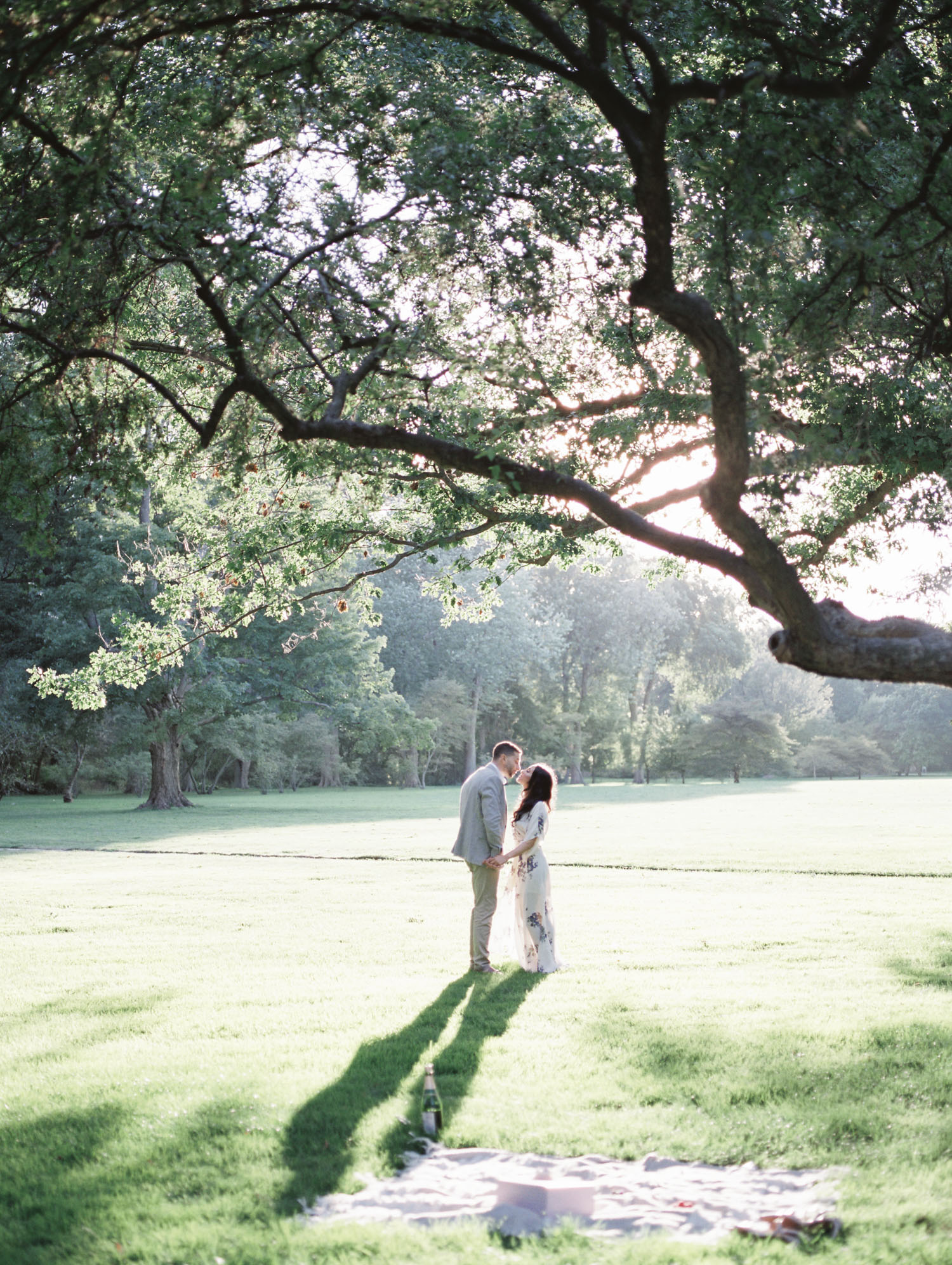 A couple kisses under a big, winding tree at the Ford House during their engagement photos