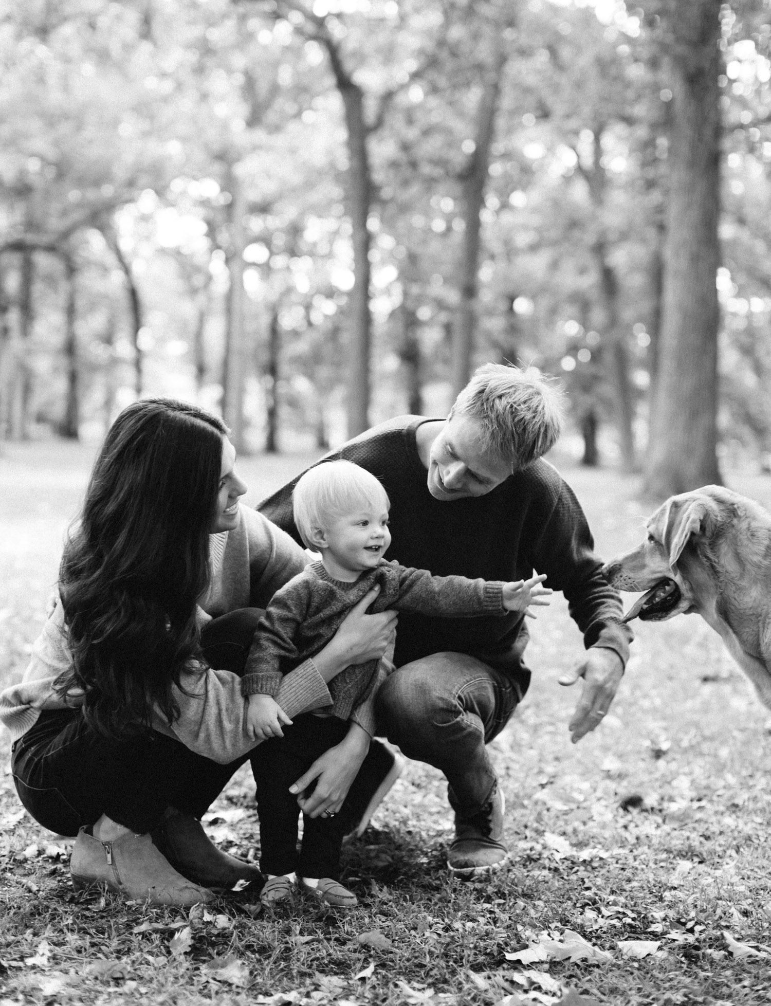 A black and white photo shows a toddler boy reaching to pet his dog at a park in Southeast Michigan
